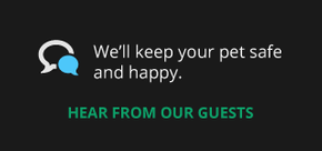 we'll keep your pet safe and happy | hear from our guests